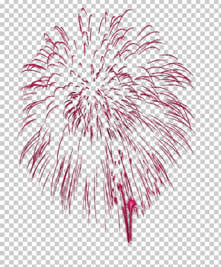 Fireworks GIF PNG, Clipart, Free PNG Download.