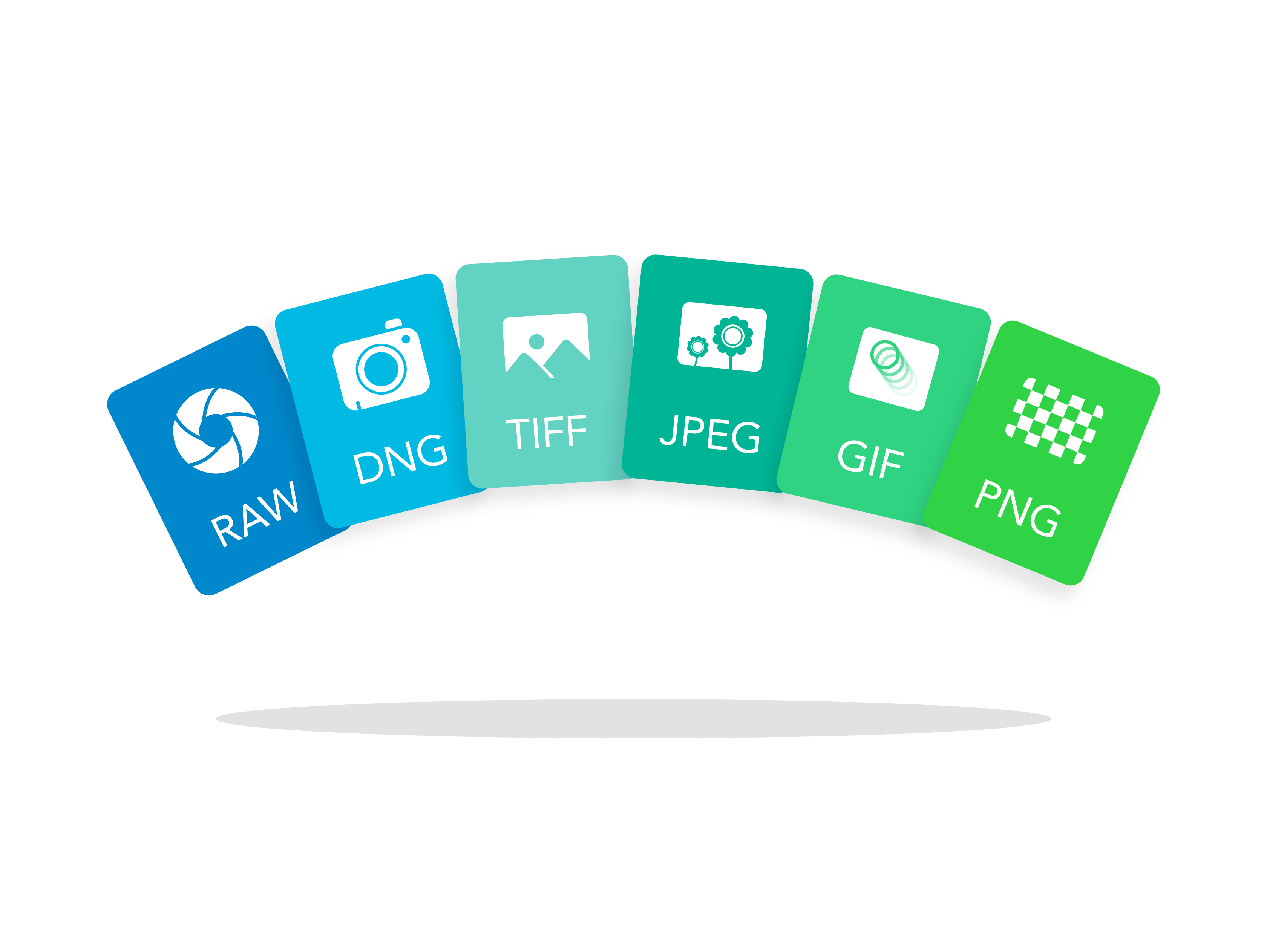 Image File Formats: Difference Between RAW, DNG, TIFF, GIF, PNG, and.
