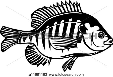 Blue gill Clip Art Royalty Free. 189 blue gill clipart vector EPS.