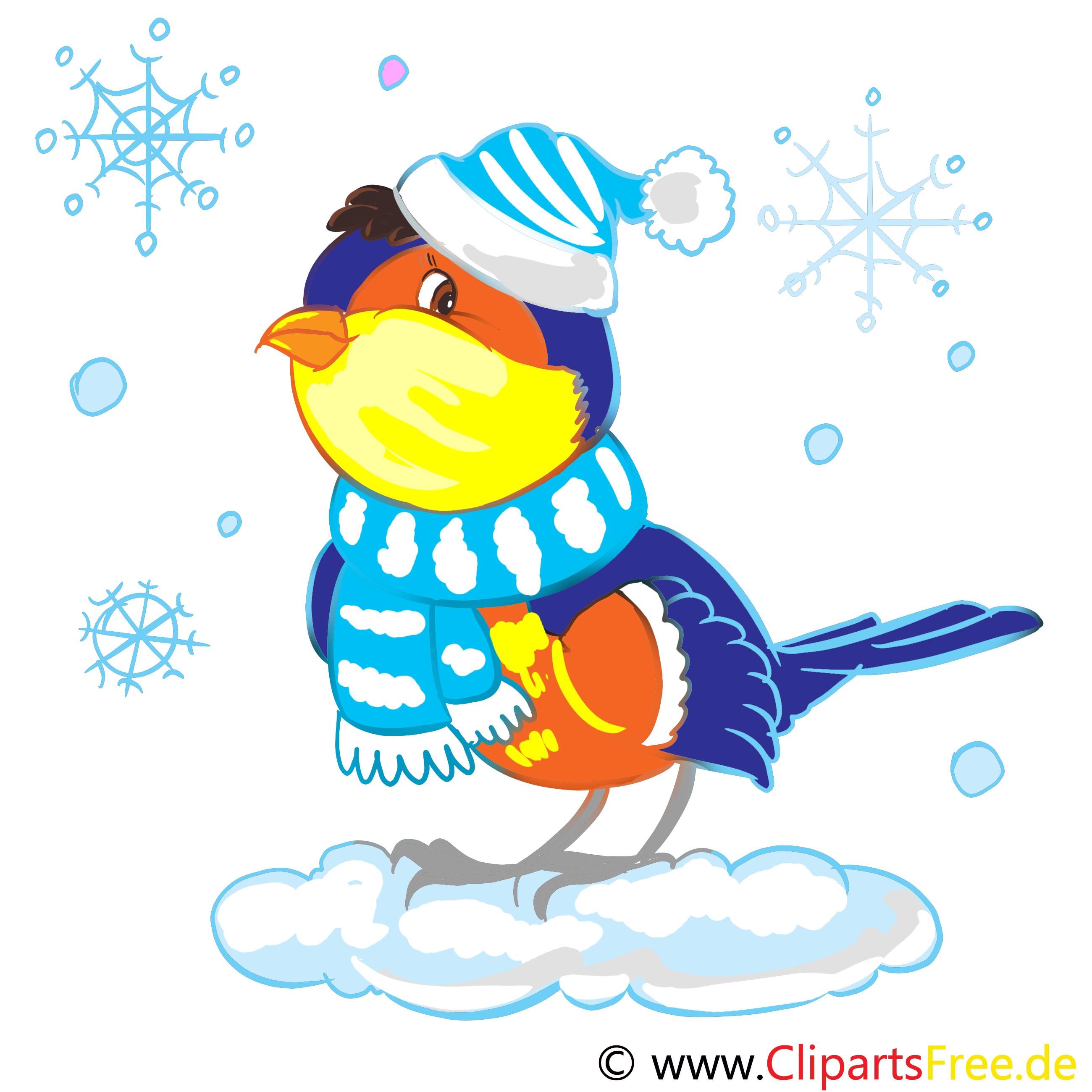Dompfaff, Gimpel Clip Art, Bild, Illustration gratis.