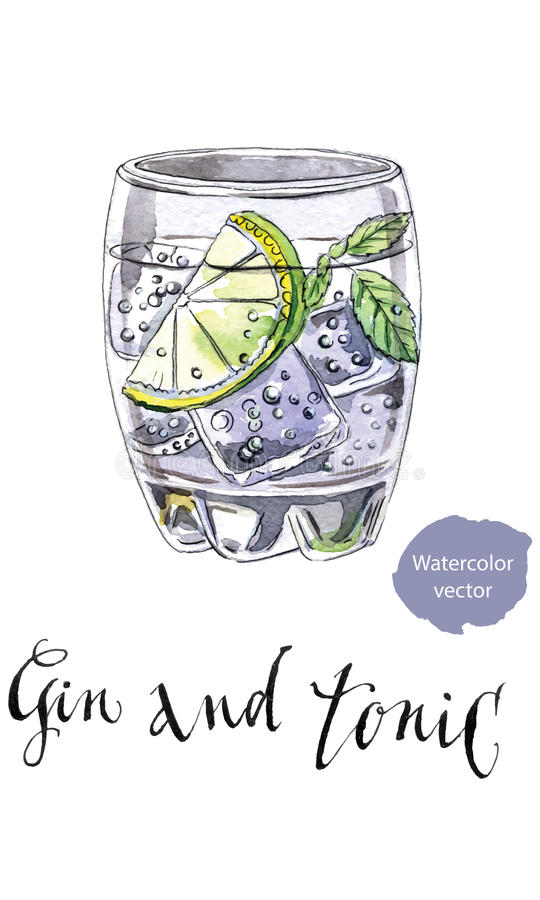 Gin Tonic Stock Illustrations.