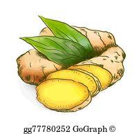 Ginger Clip Art.