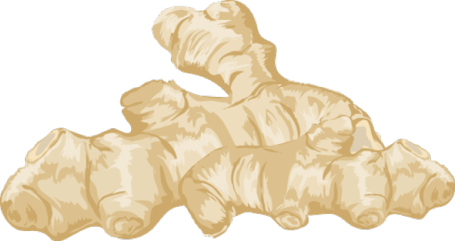 Ginger Clipart.