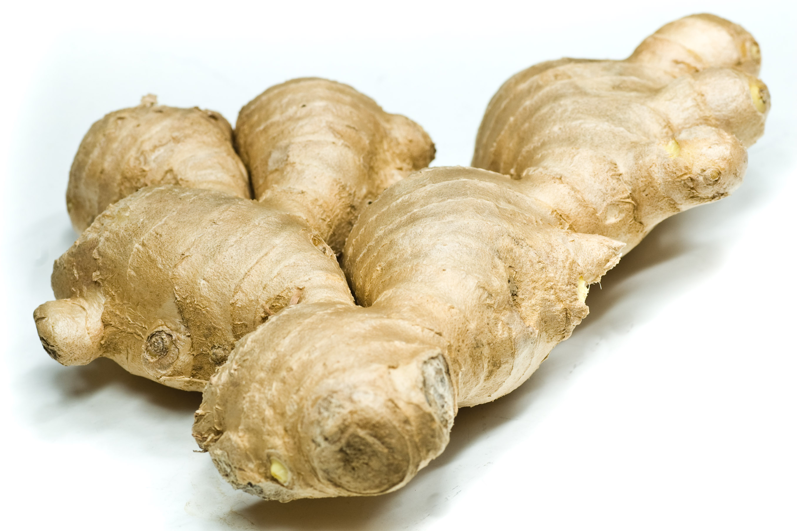 The World of Rhizome: Ginger • Connect Nigeria.