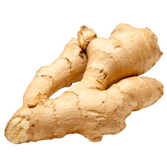 Ginger PNG images free download.