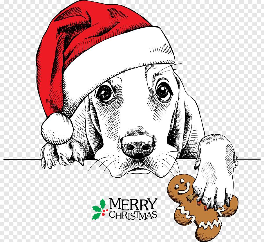 Dog wearing Santa hat and holding gingerbread art, Basset.