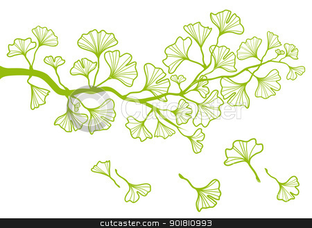 Ginkgo Leaves Clipart.