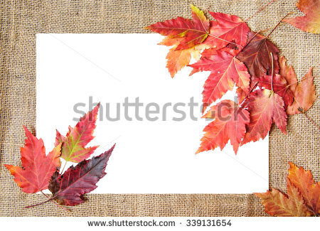 Autumn Plane Leaf Object Tree Stock Photos, Images, & Pictures.