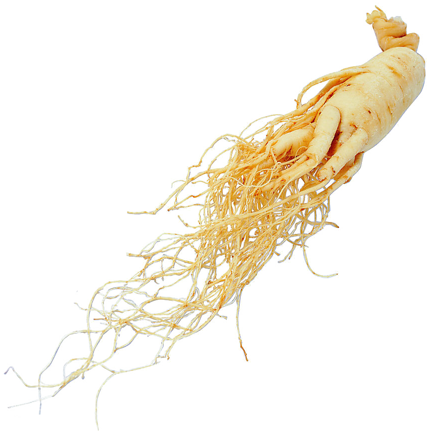 HD Panax Ginseng Root Extract.