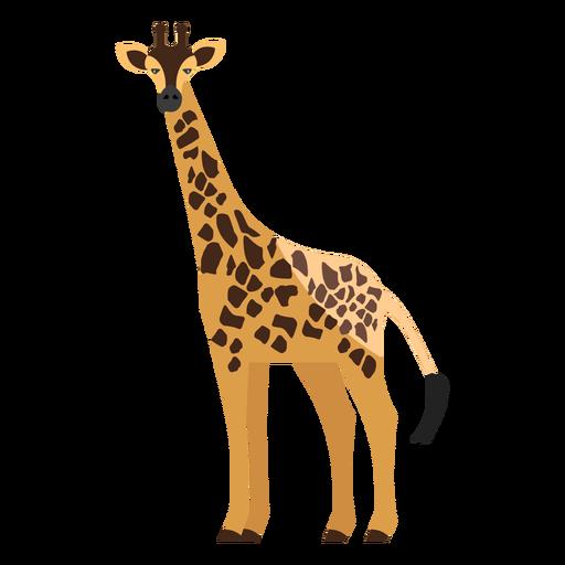 Girafa vista lateral plana.