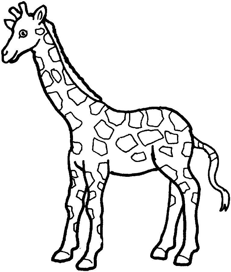 Giraffe black and white clipart 3 » Clipart Portal.