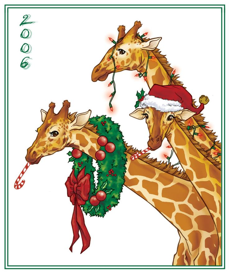 17 Best images about giraffe christmas oranments on Pinterest.