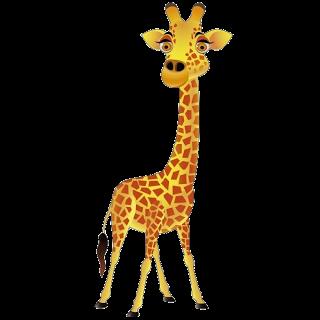 Giraffe Images.