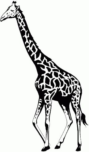 Outline Giraffe Clipart.
