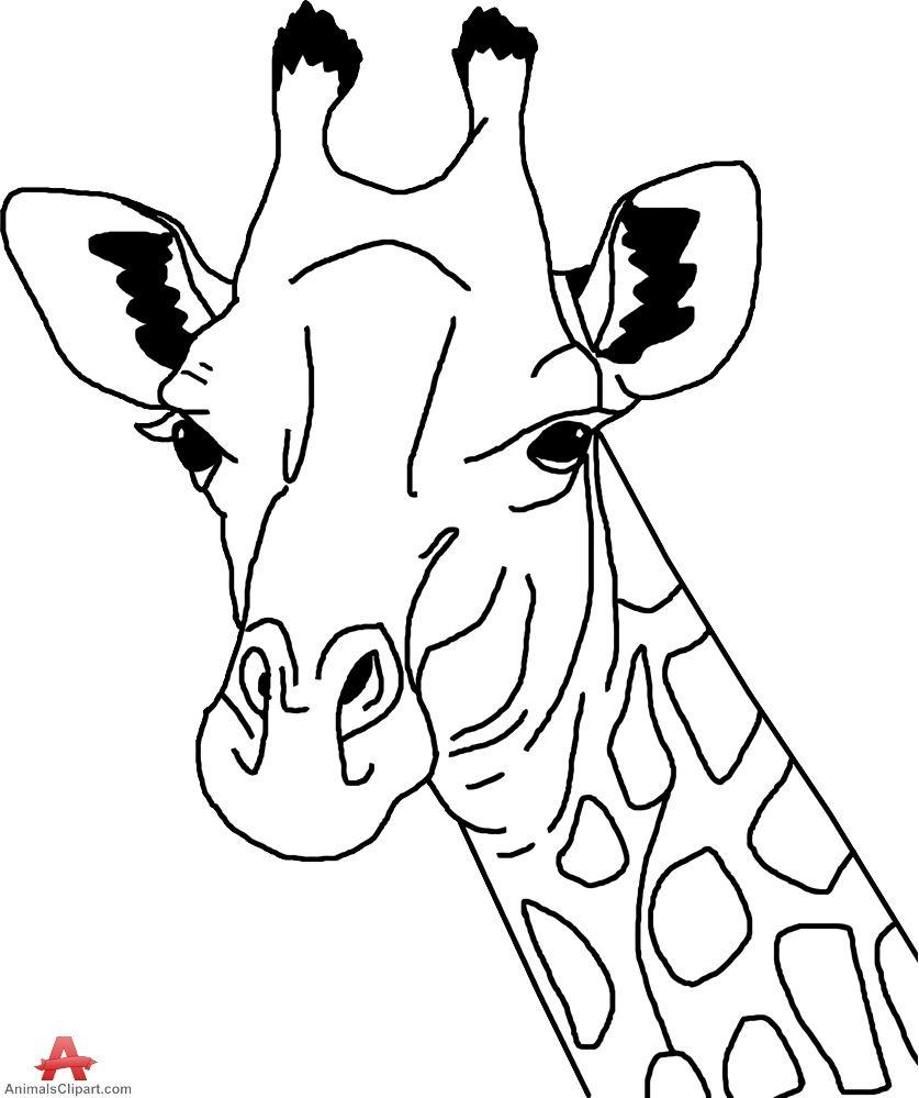 Giraffe clipart head and neck.