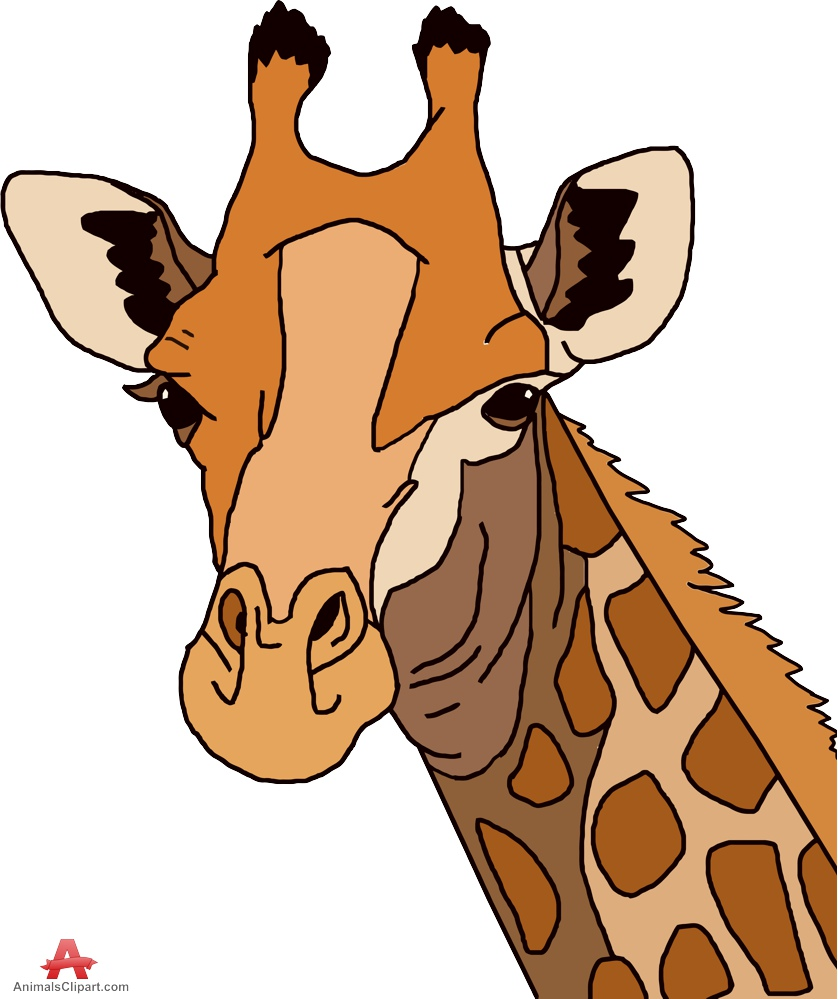 Giraffe Head Clipart (98+ images in Collection) Page 1.