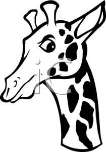 Giraffe Head Clipart Black And White.