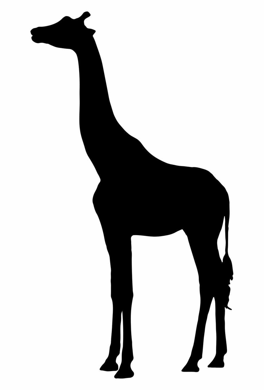 Giraffe Silhouette Clipart Group (+), HD Clipart.