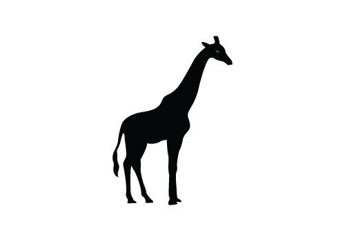 Giraffe Silhouette Vector.
