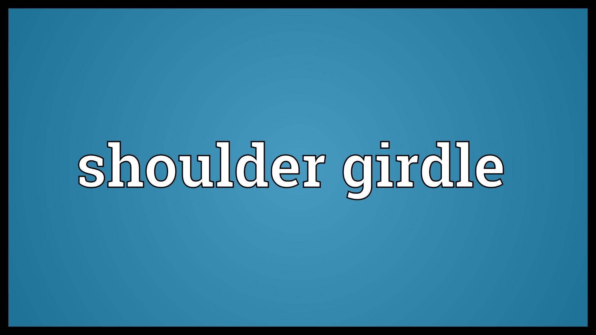 Shoulder girdle Meaning.
