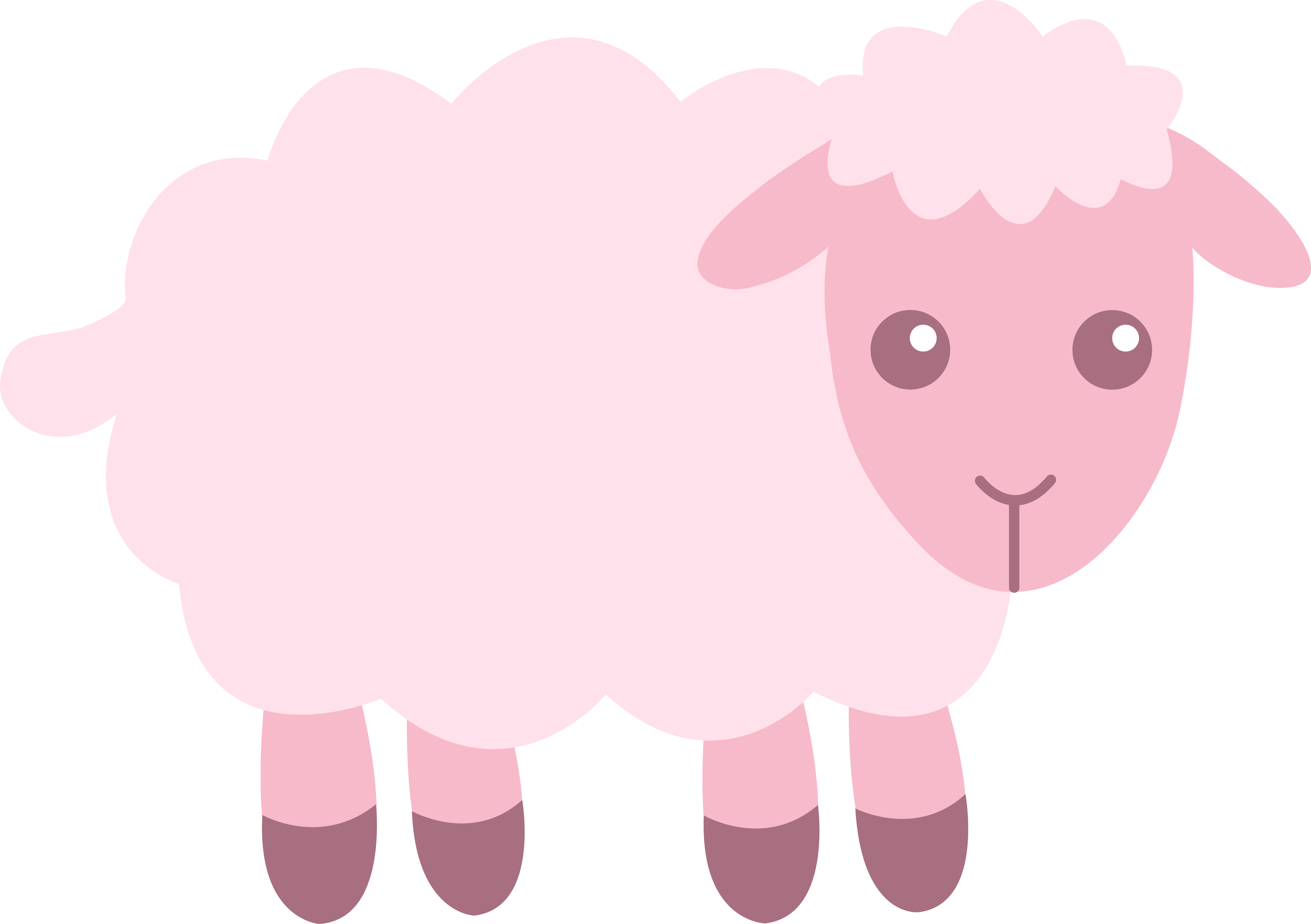 Lamb Image.