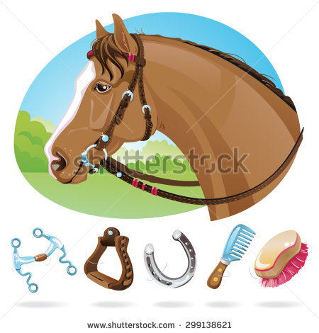 Bridle Isolated Stock Images, Royalty.