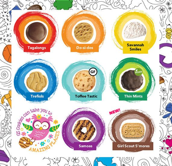 2017 Girl Scout Cookies Lanyards ABC & Brownie by.