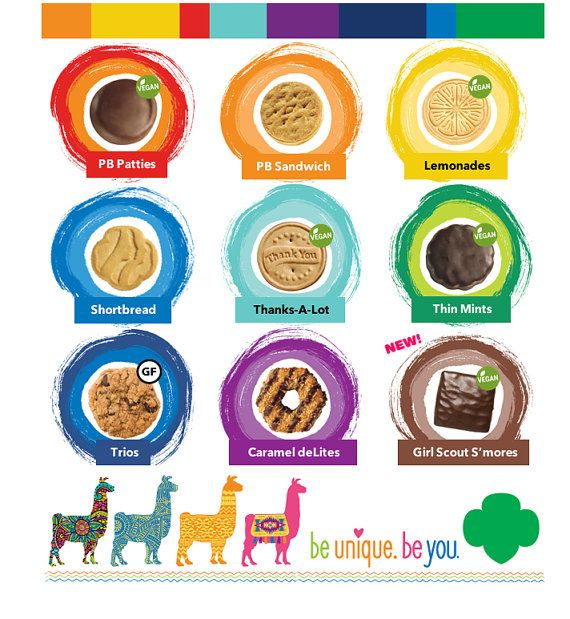 2017 Girl Scout Cookies Lanyards ABC & Brownie by JakeAndCoco.