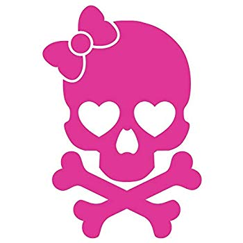 Amazon.com: Milk Mug Designs Girly Skull and Crossbones.