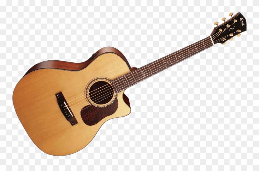 Drawing Guitar Acoustic.