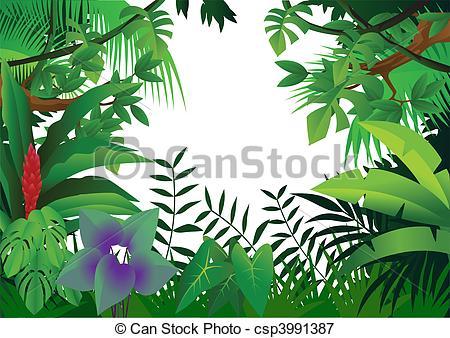 Amazon Illustrations and Stock Art. 2,250 Amazon illustration and.