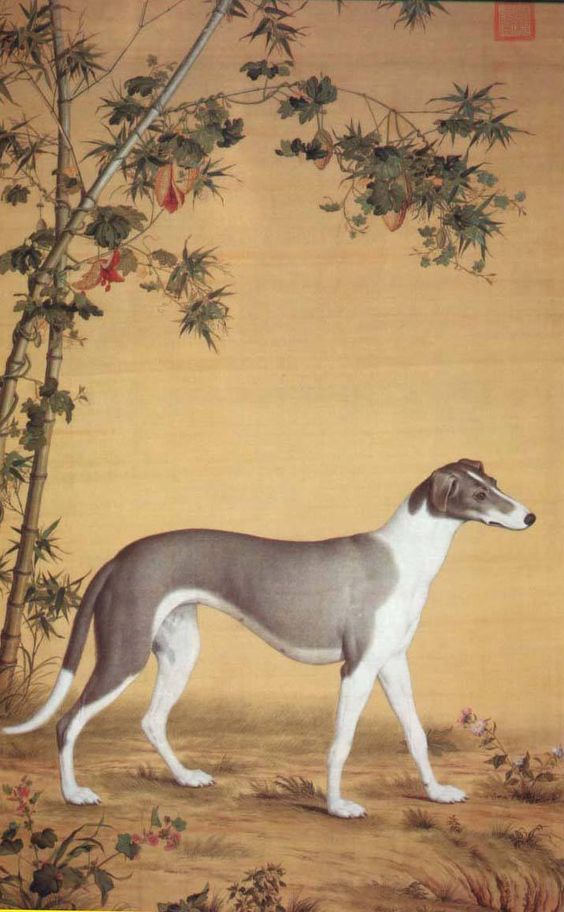 Mongolian Dog : Taiga from【 Ten Prized Dogs Album】By:19th.