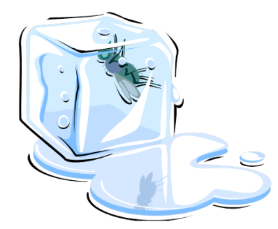 Ice Clipart.