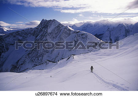 Stock Photo of Skiers ascend Video Peak, Rogers Pass, Glacier.