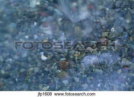 Pictures of Abstract of creek.