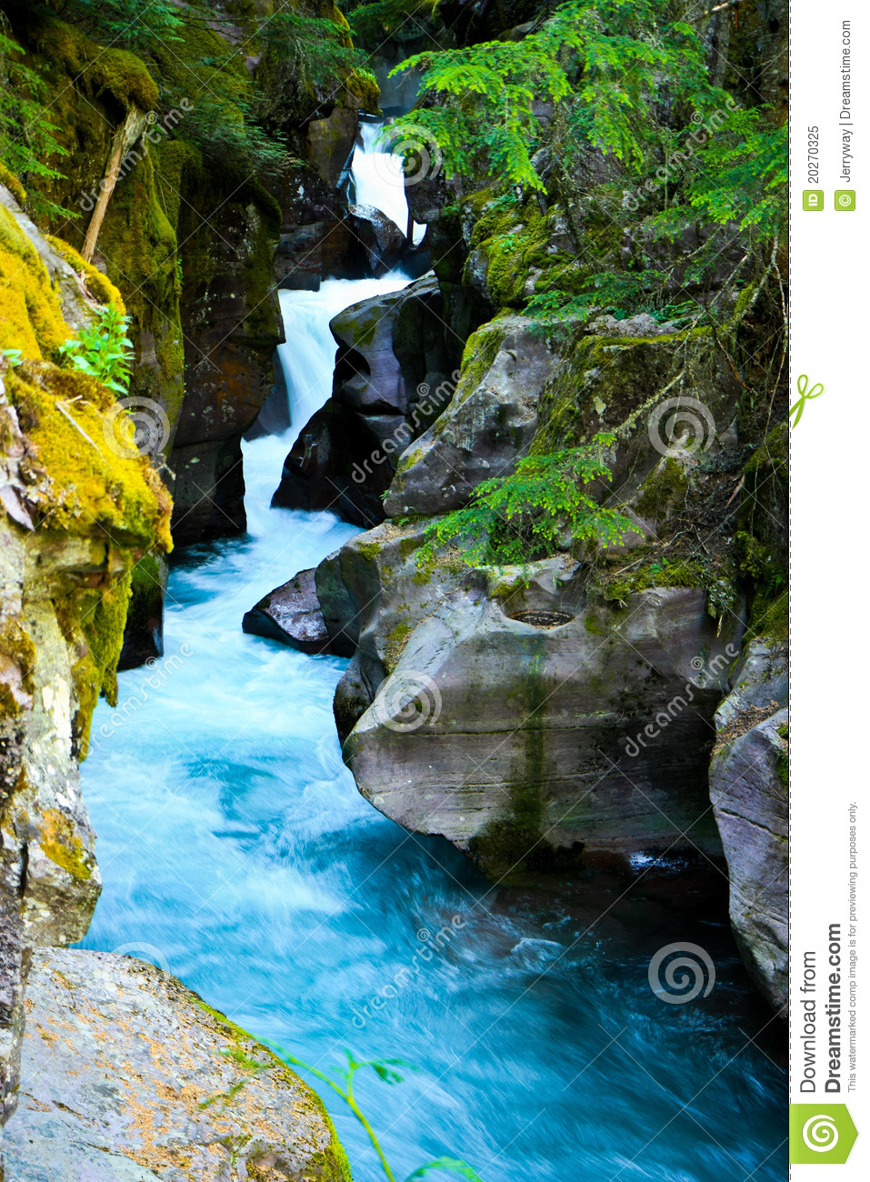 Avalanche Gorge, Glacier National Park, Montana Royalty Free Stock.
