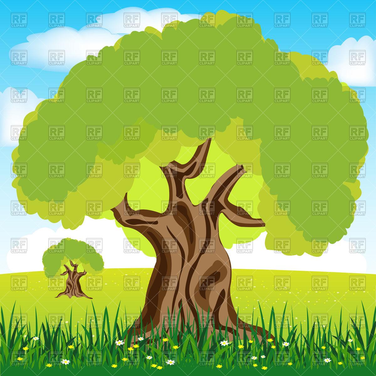 Big tree oak on glade Vector Image #91401.