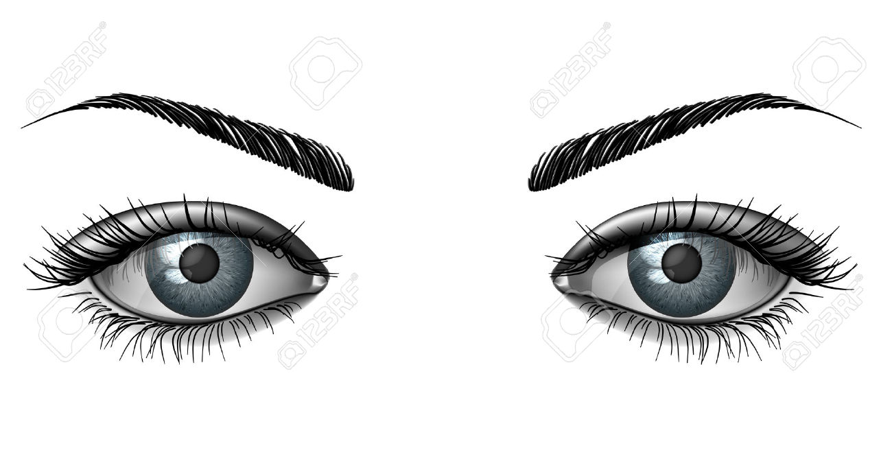 Realistic Female Eye Close Up, Wide Open Glance With Eyebrows.