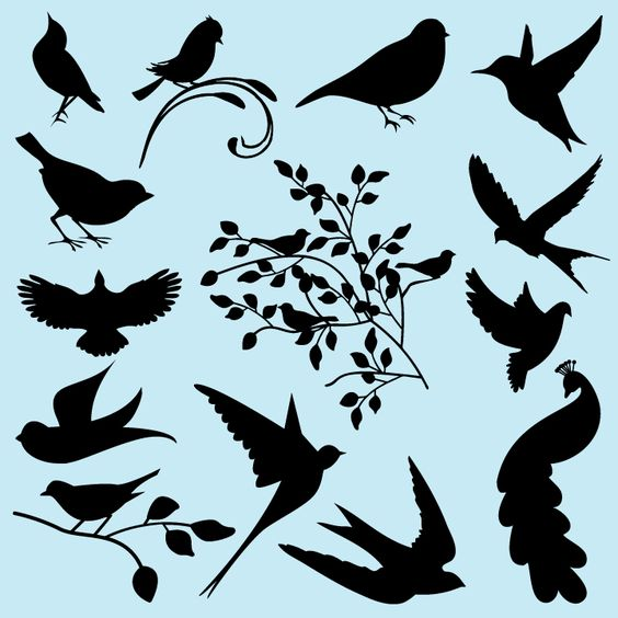 Clipart images of birds for glass etching art.