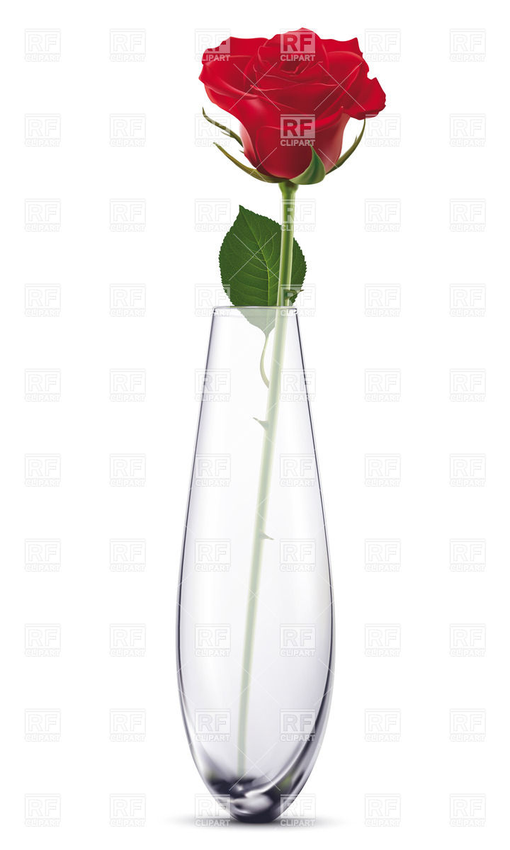 Red realistic rose in glass vase Vector Image #27746.