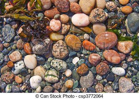 Stock Photo of Wet Beach Pebbles.