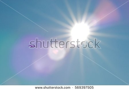 Glisten In The Sun Stock Images, Royalty.