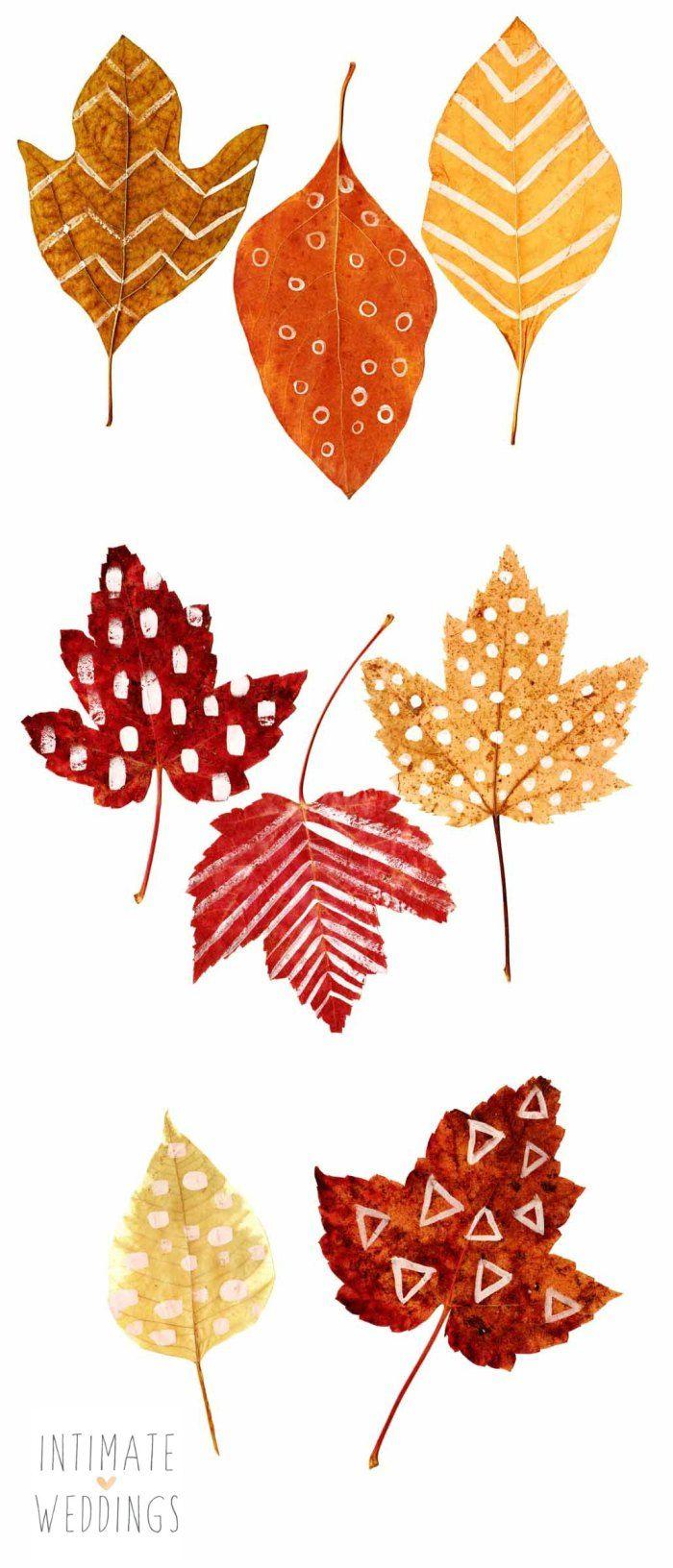 1000+ ideas about Autumn Leaves on Pinterest.