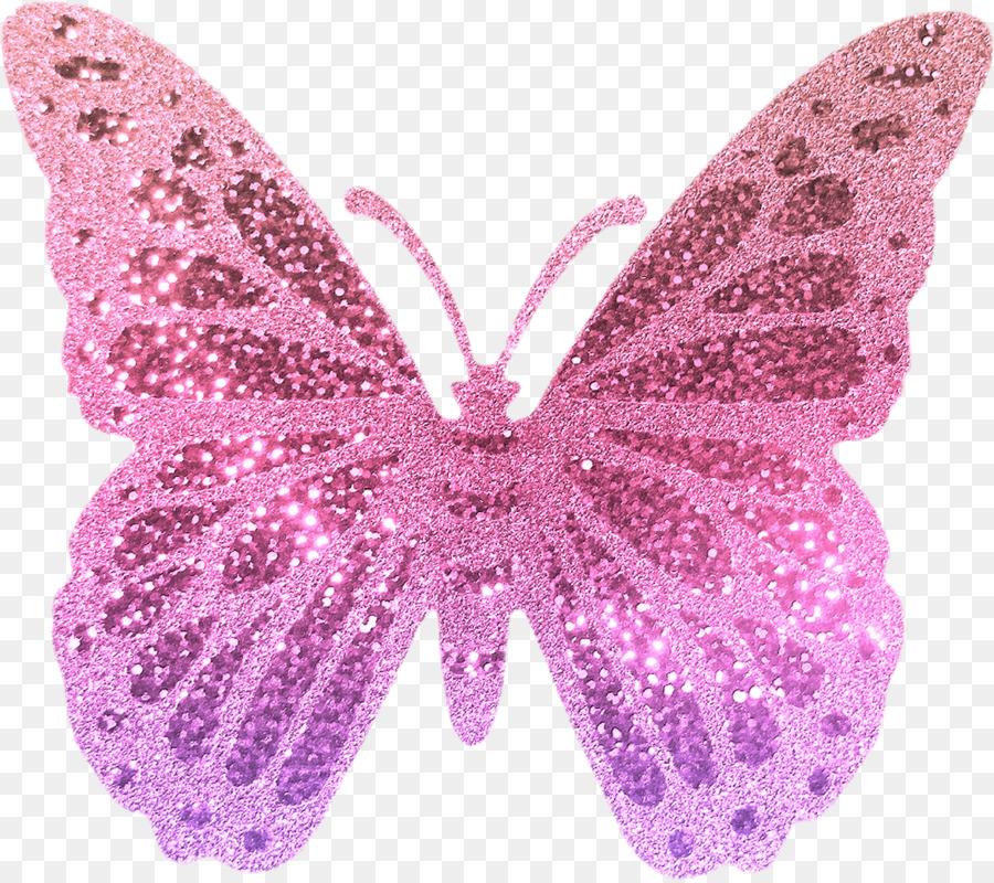 Butterfly Cartoon clipart.