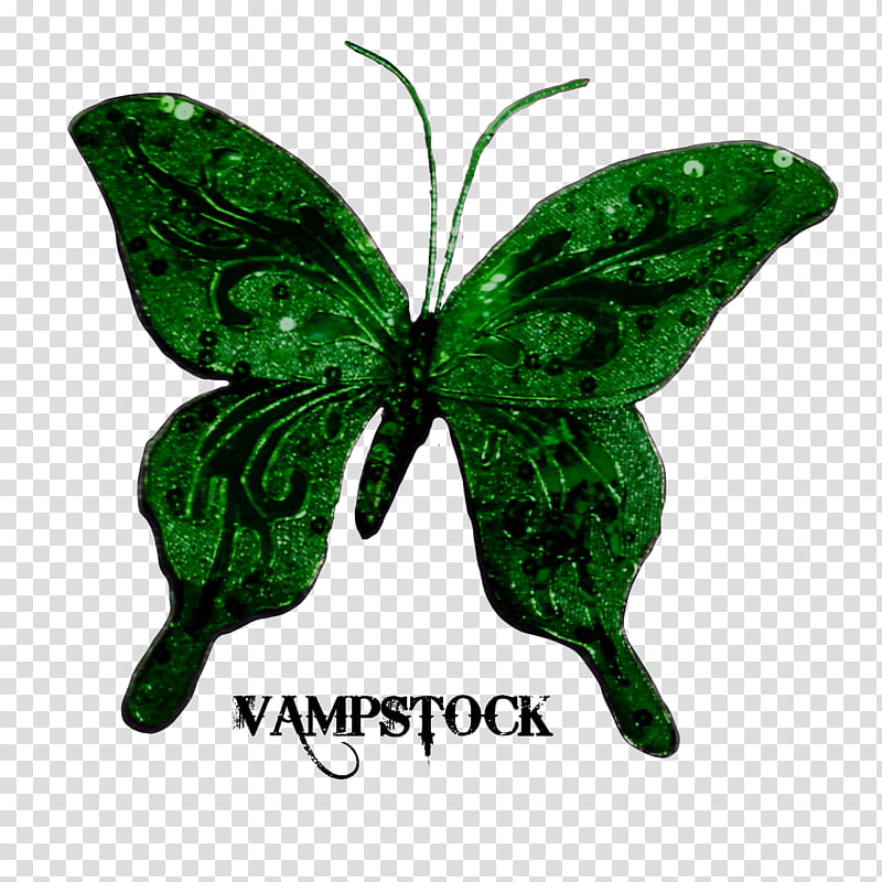 Glitter Butterfly Vamp, green moth illustration transparent.