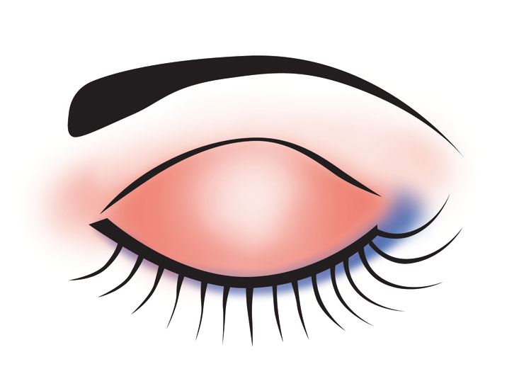 Free Makeup Cliparts Eyeshadow, Download Free Clip Art, Free.