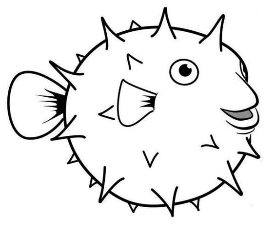 Puffer fish clipart black and white.