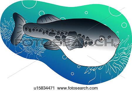 Clipart of vertebrate, globefish, sea fish, sea anemone, sea, fish.