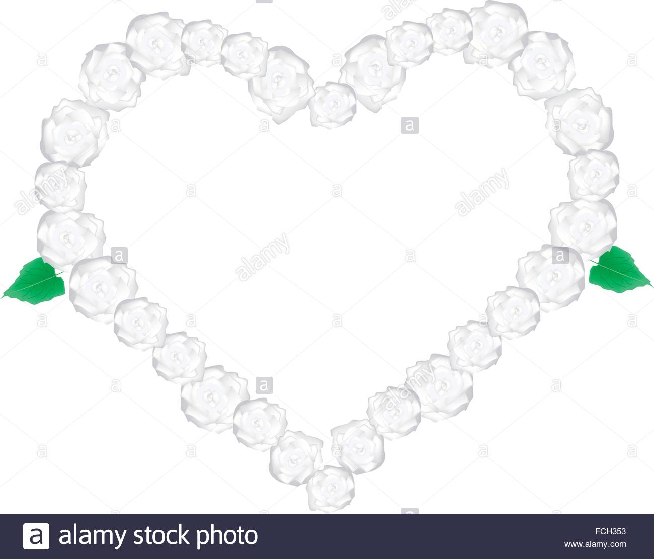 Love Concept, Illustration Of White Glory Bower Flowers Or Stock.