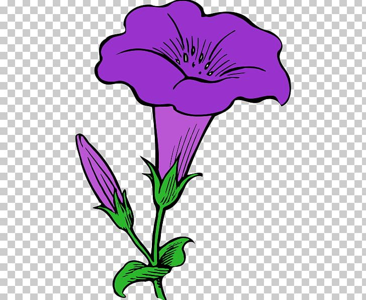 Morning glory download free clipart with a transparent.